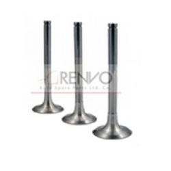 4895051 ENGINE VALVE EX
